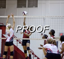 083013_AHS_volleyball_05