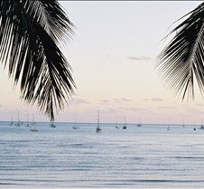 Early Morning, Airlie Beach, Queensland