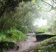 Machu Picchu Walk to Bridge
