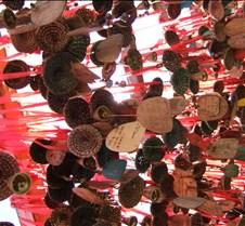 2008 Nov Lijiang 066