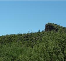 Tucson Sabino Canyon 50