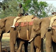 Elephant Ride0006