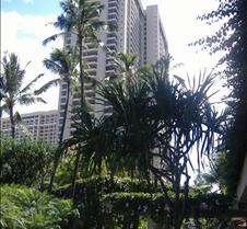 Hilton Tower