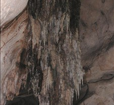 Stalagtites (cieba tree roots)