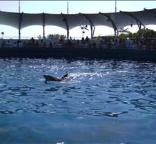 Miami Seaquarium 067
