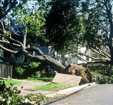 Hurricane Juan 01-10-03