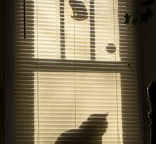 Erin+in+the+Window