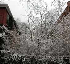 March 1, 2005 MAJOR SNOWFALL