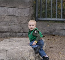 J Zoo 0611_048