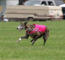 Run2_Specials _Course1_6497 copy