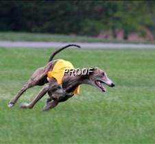Run2_Specials _Course3_6551 copy