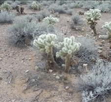 Scottsdale, Arizona 050