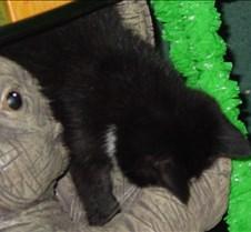 October2002 010