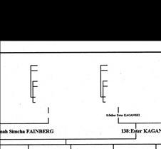 Extended Fainberg