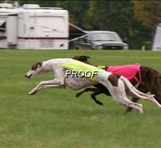 Run2_Course3_IMG_6404 copy2