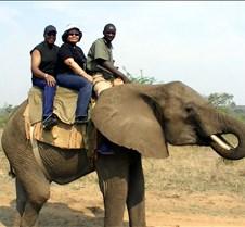 Elephant Ride0017