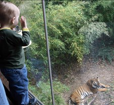 J Zoo 0611_060