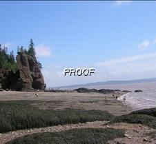 Low tide Hopewell Rocks