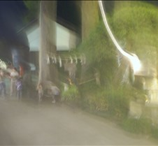 blury trees