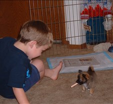Danny playing with puppy
