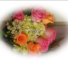 Lutes Wedding 065 Edged