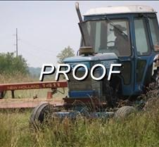 070613_Farmer Wildart02