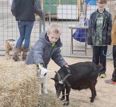 Erickson's Petting Zoo