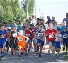 celeste fun run
