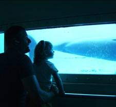Miami Seaquarium 026