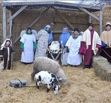 live nativity scene1