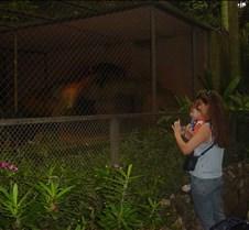 EUA e  Zoologico 097