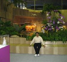 2005 Singapore airport visit These photos were taken during my 2005 transit stop at singapore airport.