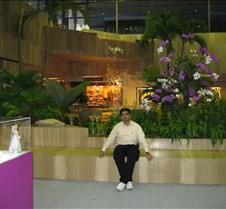 2005 Singapore airport visit These photos were taken during my 2005 transit stop at singapore airport.