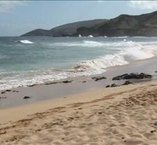 Sandy Beach 11 4-25-05