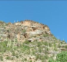 Tucson Sabino Canyon 11