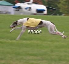 Run2_Course1_IMG_6332 copy