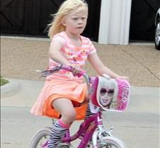 2014 Lily Bike