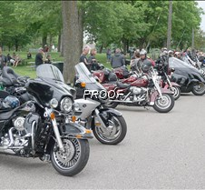 Motocycles lined up