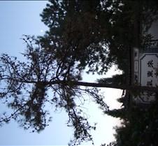 2008 Nov Lijiang 181
