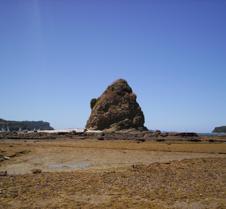 Rocky Island Scene NZ