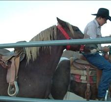 Tucson Lazy K cowboys 12