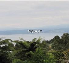 Lale Taupo NZ