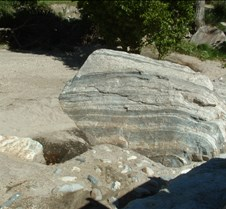 Tucson Sabino Canyon 7