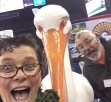 Pelican Dawn finn, Bob Kohler