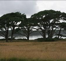 Muckross Lake--IMG_9834