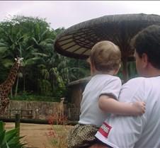 EUA e  Zoologico 085