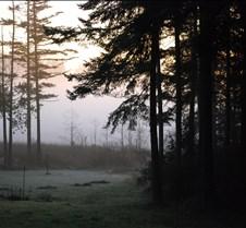 Winter 2008/2009