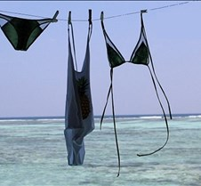 swimsuits on the line 1