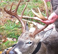 Area 16, 153 lbs, 10 points, 11/15/2013
