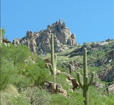 Tucson Sabino Canyon 30